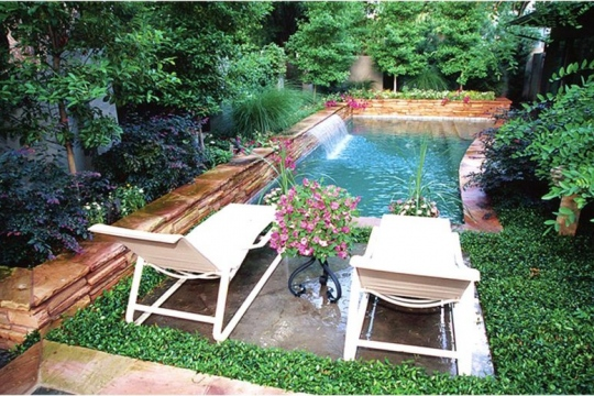 Trends and Ideas for an Eco-Friendly Back Yard