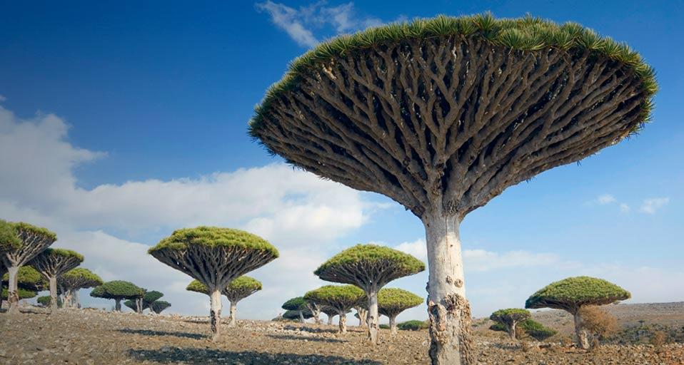 Middle East Best Kept Hidden Gems That You Should Visit