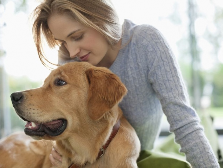 Top 10 Dog Breed Companions for Single Women
